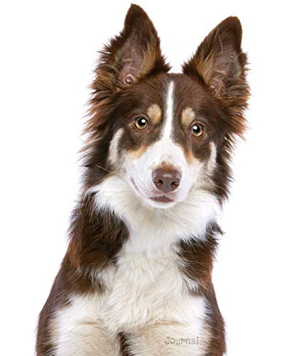 Journal: Red and White Border Collie Notebook