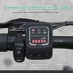 FIIDO-D2s-Mountain-Bike-Elettrica-Bici-Elettrica-Bici-Pieghevole-Ebike-Pneumatici-da-16-Pollici-Bici-Elettrica-Pieghevole-Motore-250W-Watt-6-velocit-Bici-Elettrica-per-Adulti
