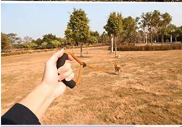 t/ägliches Training.mit 2 Karabinerhaken,Handschlaufe KATELUO Schleppleine 2m//5m//10m f/ür Hunde,Seil Hundeleine f/ür Welpen und Kleine Hunde,Geeignet f/ür Hundewandern Interaktion