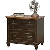 Bowery Hill 2 Drawer File Cabinet in Distressed Black