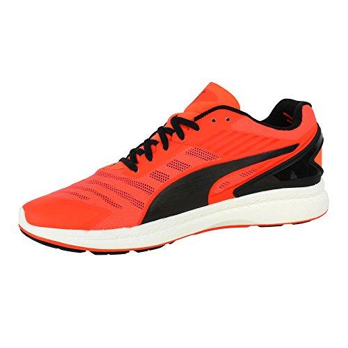 Adulte Course Rouge V2 Puma Unisexe 'ignite De Chaussures 6wxq4F5v4
