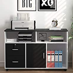 Tribesigns File Cabinet, 2 Drawer Storag...