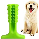 Beacon Pet Brushing Stick World's Most Effective Toothbrush for Dogs Pets Oralcare (S)