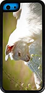 Rikki KnightTM White Baby Goat Close-Up White Tough-It Case Cover for iPhone 5 & 5s(Double Layer case with Silicone Protection and thick front bumper protection)