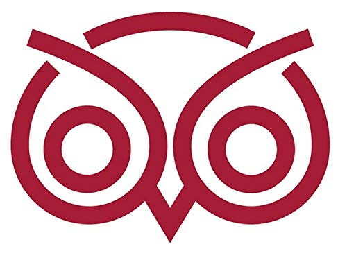 SellingDecals ncaa0437 Temple Owls Eyes Logo Die Cut Vinyl Graphic Decal Sticker NCAA Color Choice 8
