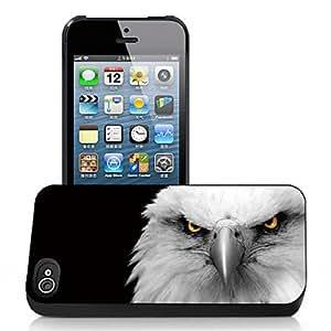 ZXM-Mal águila patrón caso el efecto 3D para iPhone5