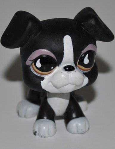 Boxer #826 (Black / White, Orange Eyes) - Littlest Pet Shop (Retired) Collector Toy - LPS Collectible Replacement Single Figure - Loose (OOP Out of Package & (Littlest Pet Shop Collectors)