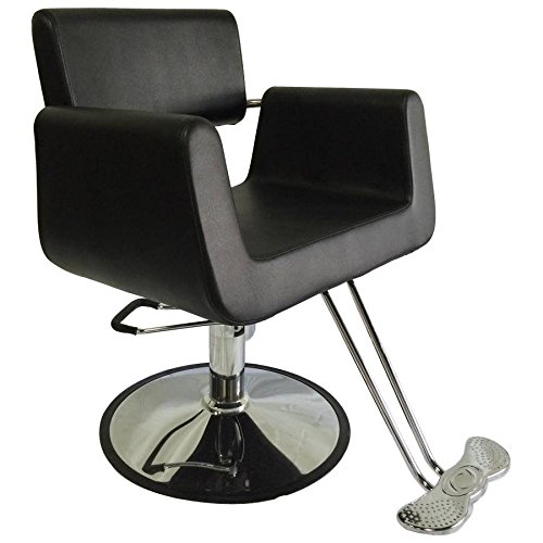 Hydraulic Comfort Styling Chair Spa Salon Beauty Equipment - DS-SC2001  sc 1 st  Amazon.com & Styling Chairs: Amazon.com