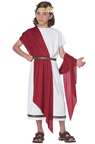 California Costumes Basic Toga Child Costume-X-Large ()