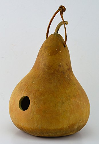 Gourd-Birdhouse-Unfinished-Create-Your-Own-Birdhouse-Childrens-Crafts-Arts-and-Crafts-Outdoor-crafts-Rustic-Dcor-Country-Life-Bird-Lovers-Kids-Project