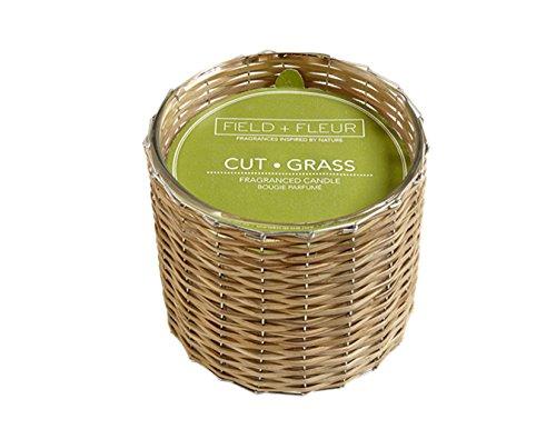 FIELD FLEUR CUT43;GRASS Field43; Fleur Reed 2-Wick Handwoven 12 oz Scented Jar - Grass Fresh Cut