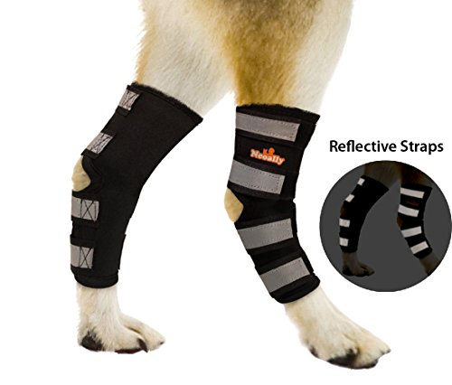 Braces [PAIR] Canine Hind Hock Sleeves with Safety Reflective Straps for Joint Injury and Sprain Protection, Wound Healing and Loss of Stability from Arthritis (S Pair) (Dog Hind Legs)