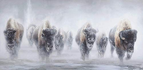 (Giants in the Mist - Western Bison Buffalo in Yellowstone Fine Art - Limited Edition Giclee Print )