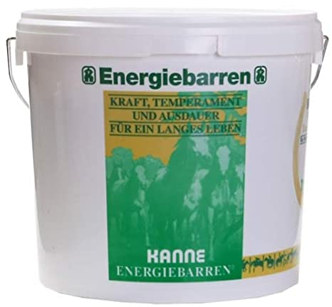 Tetera Lingote de energía de la saludable recompensa en cubo de 5 kg: Amazon.es: Productos para mascotas