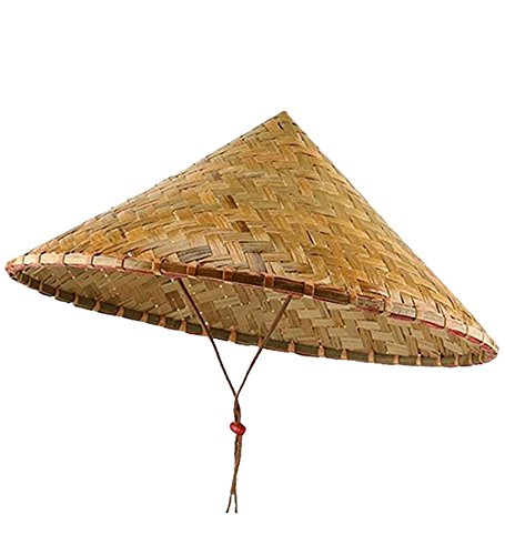 419976eb4 We Analyzed 1,105 Reviews To Find THE BEST Chinese Straw Hat