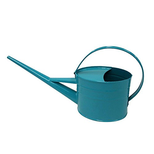 Calunce Hand Made Rustic Retro Textured 1.5L Long spout Watering can ()