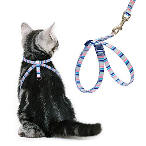 harness cat - 6