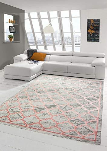 Merinos Tapis Designer Tapis Moderne Motif Marocain En Gris Rose Grosse 160x230 Cm
