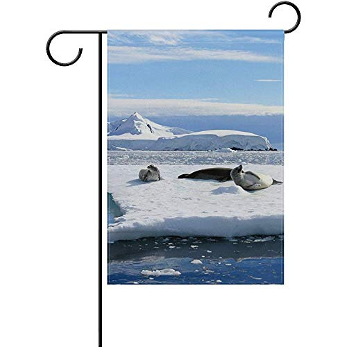 Crabeater Seal - Mesllings Crabeater Seals On Ice Floe Decorative Garden Flag Banner Polyester Welcome Seasonal Indoor Outdoor 12