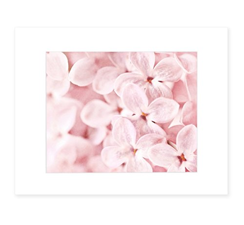 Pink Lilac Wall Art, Blossom Flower Print, Floral Wall Decor, Botanical Flower Picture, 8x10 Matted Photographic Print (fits 11x14 frame), 'Bed of Lilacs'