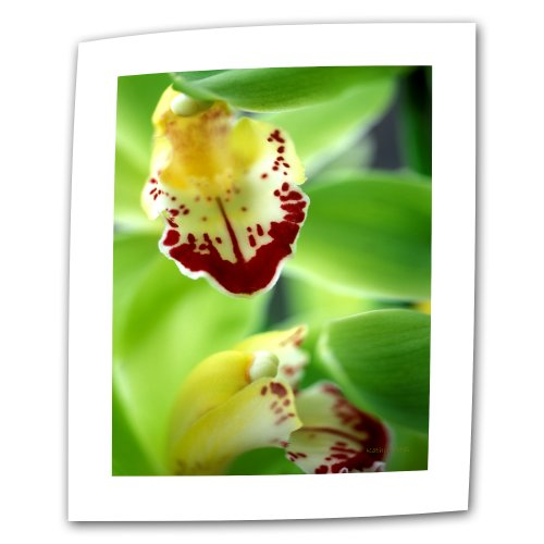 ArtWall Cymbidium Sea Foam Emerald Orchid 32 by 48-Inch Flat/Rolled Canvas by Kathy Yates with 2-Inch Accent Border