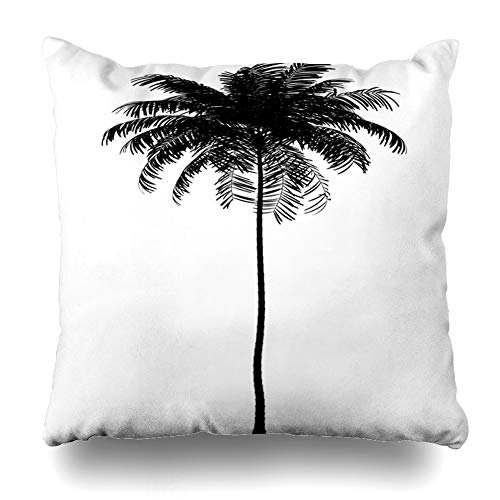 (Ahawoso Decorative Throw Pillow Cover White Black Areca Palm Tree Nature Nobody Single Catechu Clipping Path Design Home Decor Pillowcase Square Size 18