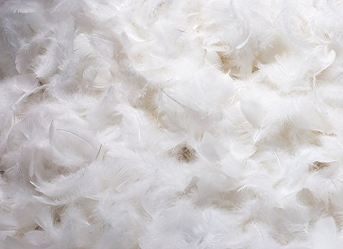 Bulk White Goose Down 25% Goose down 75% Goose feather Blend (5 Lbs.) by East Coast Bedding