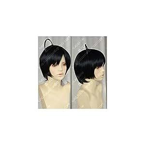 Bakemonogatari (fake story) Araragi Mon Tue cosplay wig + wig net (japan import)