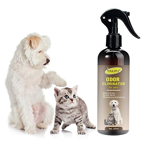 Odor Eliminator, Odor Remover, Pet Odor & Stain Remover for Dog and Cats, Urine Remover and Carpet Deodorizer for Dogs and Cats,Quick & Easy(300ml)
