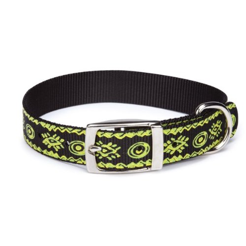 Casual Canine Nylon Artisan Print Dog Collar, 8-11-Inch, Parrot Green