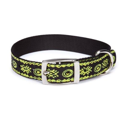 Casual Canine Nylon Artisan Print Dog Collar, 8-11-Inch, Parrot Green