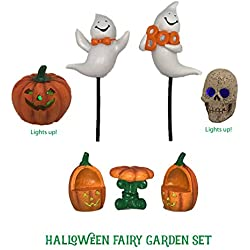 Halloween Fairy Garden Accessories Kit - 8 Pieces Including 2 that Light Up! Fun Miniature Ghosts, Jack O Lantern, Skull and more!