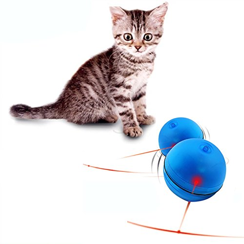Animal Toys That Move