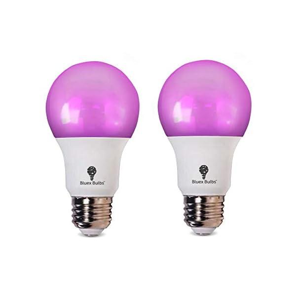 Grow light bulbs