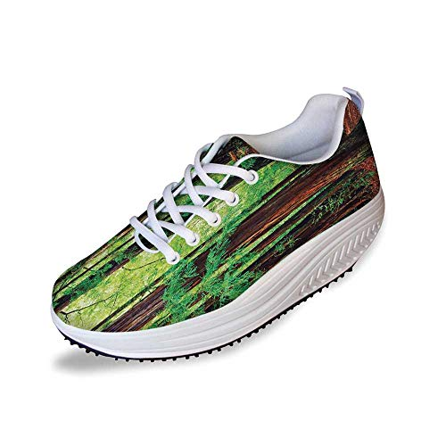 Woodland Decor Stylish Shake Shoes,Redwood Trees Northwest Rain Forest Tropic Scenic Wild Nature Lush Branch for Women,5