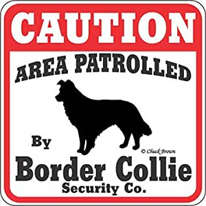 Spoiled Rotten Border Collie Dog 5 x 10 Wood SIGN Plaque USA Made