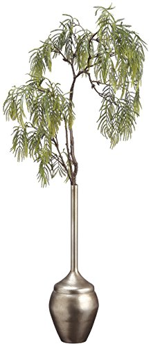 36 Inch Tall Acacia Spray in Metal Bottle