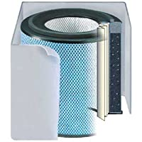 Austin Air Allergy Machine (HEGA) Replacement Filter w/ Prefilter (Light-colored)