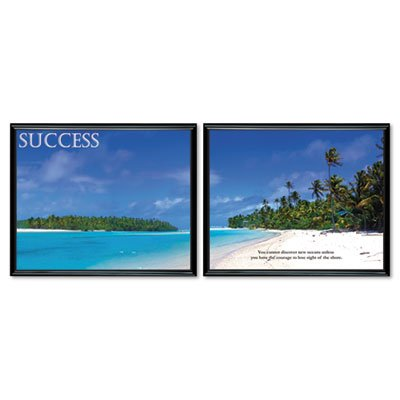 - Motivational Posters, quot;Success, 30 quot;x24 quot;, 2/PK, Black Frame