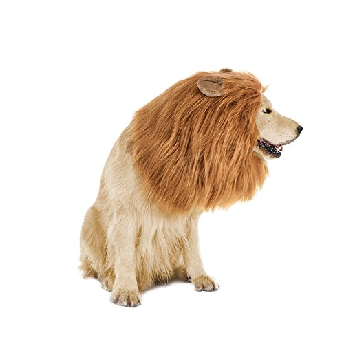 Lion Mane for Dog,Funny Dog Costumes with Lion Tail for Medium to Large Sized Dogs Halloween Christmas Cosplay Party Fancy (Halloween Costumes For Medium Sized Dogs)