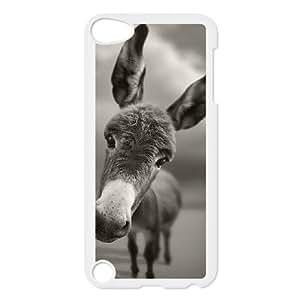 iPod Touch 5 Case White Donkey 009 LAJ7095507