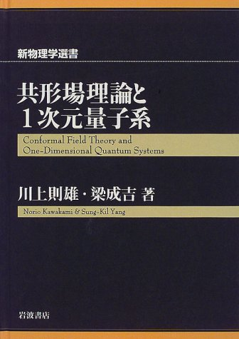 共形場理論と1次元量子系 (新物理学選書)
