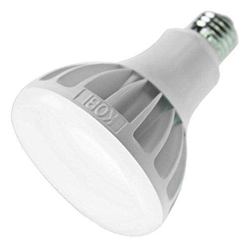 Multi Voltage Led Lights in Florida - 6