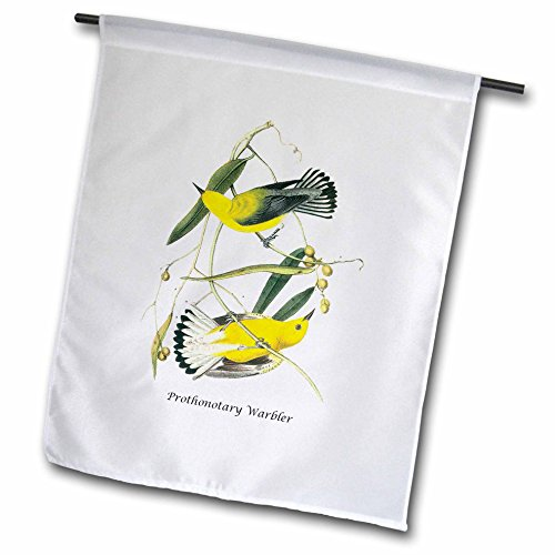 3dRose fl_114032_1 Prothonotary Warbler by John James Audubon Garden Flag, 12 by 18-Inch