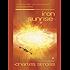 Iron Sunrise (Singularity Book 2)