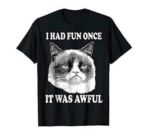 Grumpy Cat Had Fun Once Was Awful Big Face T-Shirt (Best Of Grumpy Cat)