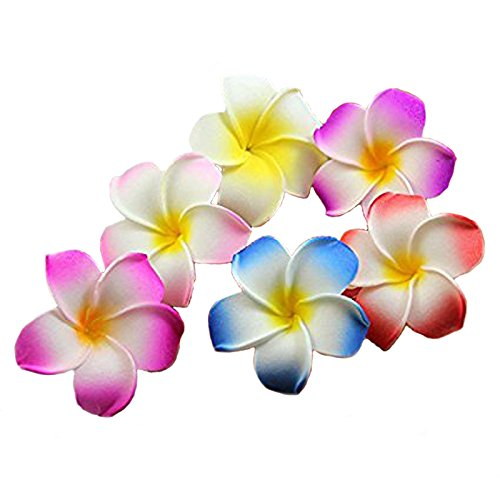 Calcifer 30pcs 1.97''Hawaii Hawaiian Plumeria Flower Clips Bridal Wedding Party Beach Hair Clips (Hair Flower Clips)