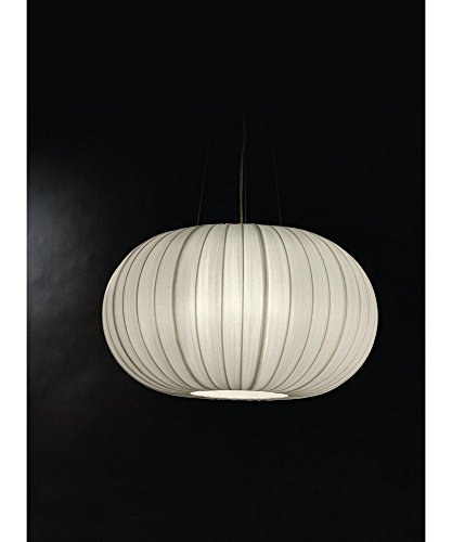 Large Oval Pendant Light in Florida - 4