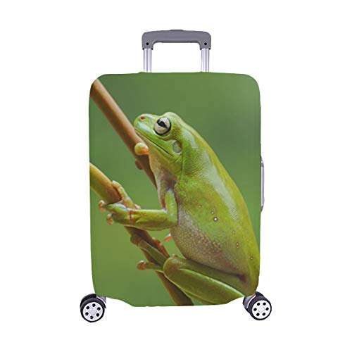 Frog Dumpy Frog Tree Frog Frog On The Leaves Pattern Spandex Trolley Case Travel Luggage Protector Suitcase Cover 28.5 X 20.5 Inch ()