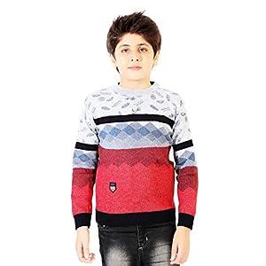 AD & AV Boy's Wool Round Neck SweaterT469_Kids_Sweater_NOMISTAKE_AA